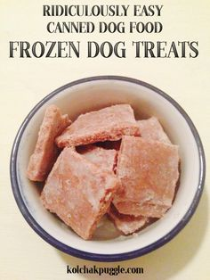 Easy, 1 Ingredient Canned Food Frozen Dog Treats