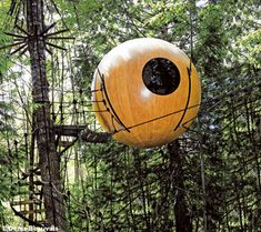 tree houses keep catching my eye...I should just bite the bullet and go stay the night in one...