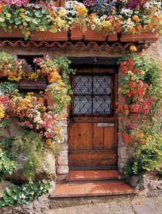 the doors, back doors, dream, cottage gardens, garden doors, front doors, cottages, hous, flowers