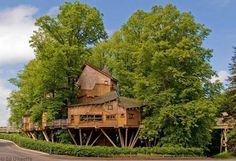 treehouses Top 8 Most Amazing Tree Houses