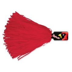 Rally Pom with Pee wee Handle from  http://www.schoolspiritstore.com/school-spirit-and-cheer-ideas/