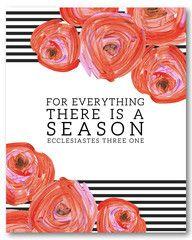 Ecclesiastes 3:1 - Naptime Diaries