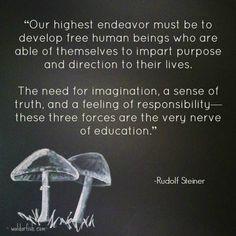 #inspire #quote #waldorf #waldorfish #education #teach #steiner