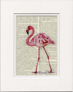 pink flamingo I -  vintage artwork printed on page from  old dictionary. $12.00, via Etsy.