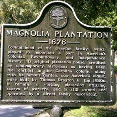 Magnolia Plantation Charleston, SC