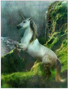 True Unicorn Painting