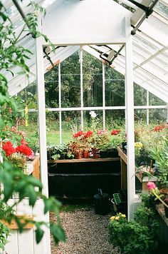 i will have a greenhouse!