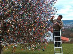 easter tree, holiday, egg tree, idea, happi easter, stuff, trees, easter eggs, spring