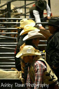 Bull Riding (: