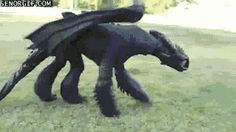 Toothless cosplay. So I'm not even in this fandom, but HOW did they do this?! O_o