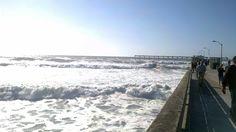 Ocean Beach San Diego!