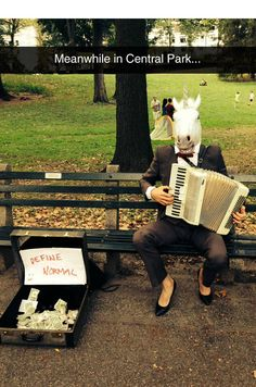 Central Park Is Full Of Curiosities