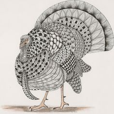 Turkey  template van Ben Kwok Adri