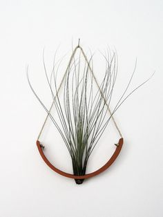 Hanging Air Plant Cradle (tm) - Natural TerraCotta Planter Vase ($36.00) - Svpply
