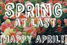 Cardigan Chic: Hello April!!!