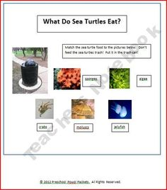 60-page Oceans Theme PDF on Teachers Notebook for early elementary students.  Great for curriculum supplement or homeschool.    3.99.  Includes 22 lesson plans and more than 30 printables.