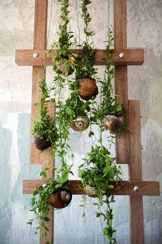 Love this Opus Studio vertical garden made form a bunch of hanging gardens! florist studio, seashel planter, florist shop, seashell planter, inside garden, hang seashel, opus, hanging gardens, inspir imag