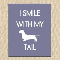 I smile with my tail