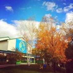 Hello Fall! #benandjerrysfactory (Taken with Instagram at Ben & Jerry's Factory)