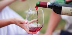 If you want to be more a little more educated in wine... this is the perfect read //