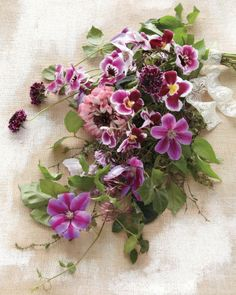 Clematis and Ivy - perfect for a bridal bouquet