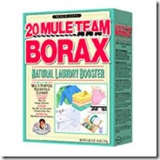 20 Uses for Borax » Survival and Beyond