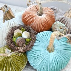 Alternative Color Palette for Fall | Autumnal Jewelled Velvet Pumpkins from LoveFeast Shop
