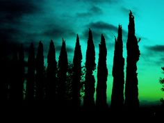 """Green Blue Dawn"""