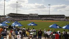 Tampa Bay Rays Spring Training Home in Port Charlotte, FL