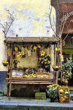birchandwillow:  lemon stand