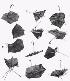   #illustration   #umbrella