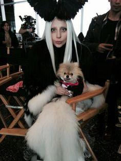 Gaga and the Gigster <3