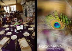 Peacock wedding theme with purple reception tables at the Gordon Lodge.     Rob & Mandy, August 2012 Door County Wedding in Baileys Harbor, WI.     © Jason Mann Photography | http://www.jmannphoto.com