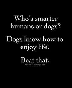 Who's smarter?