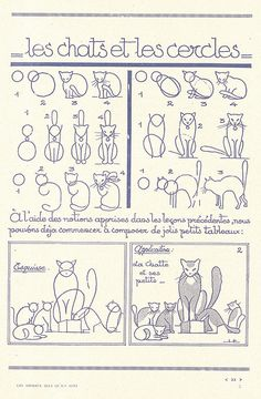 How to draw a cat.