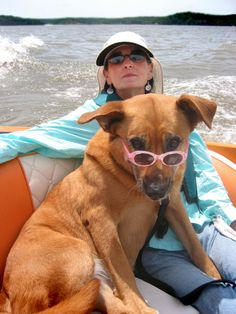Dogs Love boats!