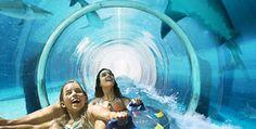 The Atlantis - So Fun!