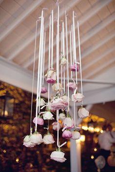 hanging roses.