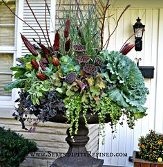 """Fabulous Urn Planter with Bright green """"creeping jenny"""", ornamental grass, perennial heuchera, sage, and Swiss chard, blue-green kale and several types of dried seed pods from lotus, ferns."""