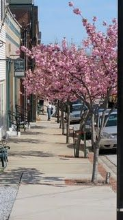 Main Street in the Spring at Wilmore, KY, near Lexington