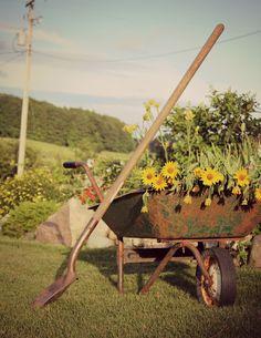 Rusty old wheelbarrow
