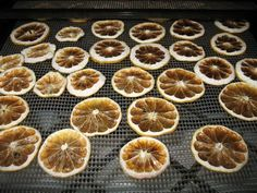 Dehydrating Lemons » Food Storage and Survival
