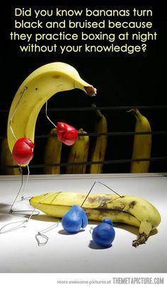 What bananas do at night…
