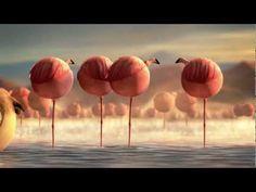 ROLLIN' SAFARI - 'Flamingos' - Official Trailer FMX 2013