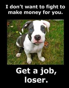Please repin to raise awareness! Pitbulls are used for fighting every day some are killed and some are badly hurt.  Some people think they can go to shellters but if they have been trained to fight they have to be put down because they could hurt other animals because its what they were trained to do.  The people who neglect these poor dogs are selfish, rude, and cruel.