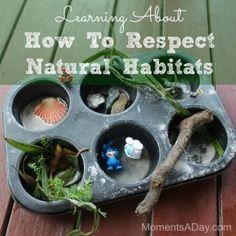 natural habitats animals, natur habitat, hands, respect natur, learn, children, gods creation, simpl activ, kid