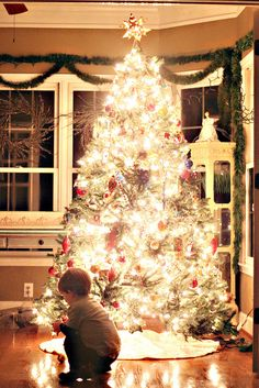 tips on taking pictures of Christmas tree and lights