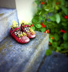 Little girl's red shoes will be so pretty when the succulents inside grow a bit more.