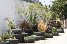 Urban Tire garden (with pointers in the linked article)