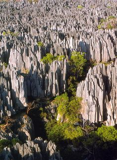 Tsingy de Bemaraha in Madagascar... those mountains are formations of karst limestone